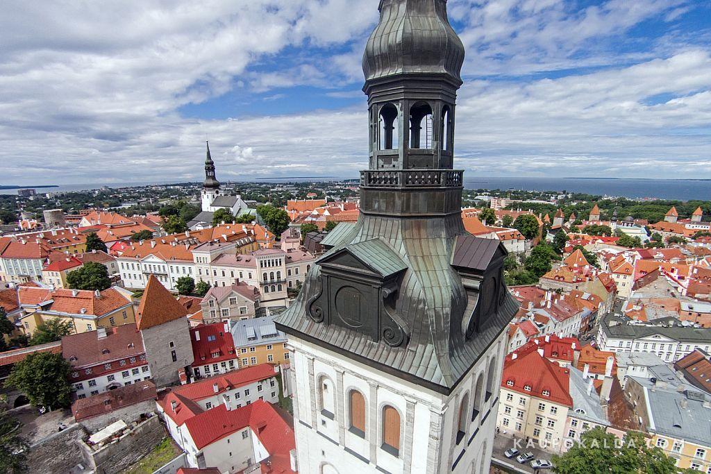 Niguliste kirik Tallinnas