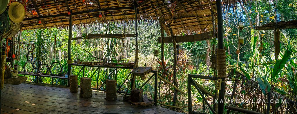 Jungle View Bungalows