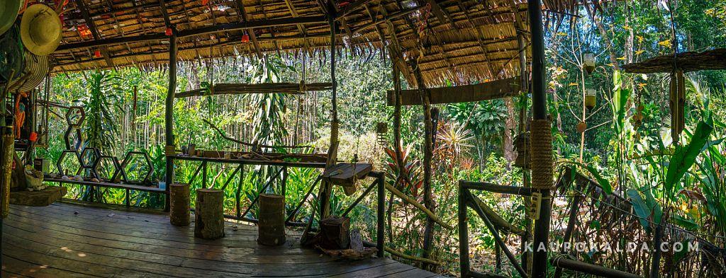 Jungle View Bungalows