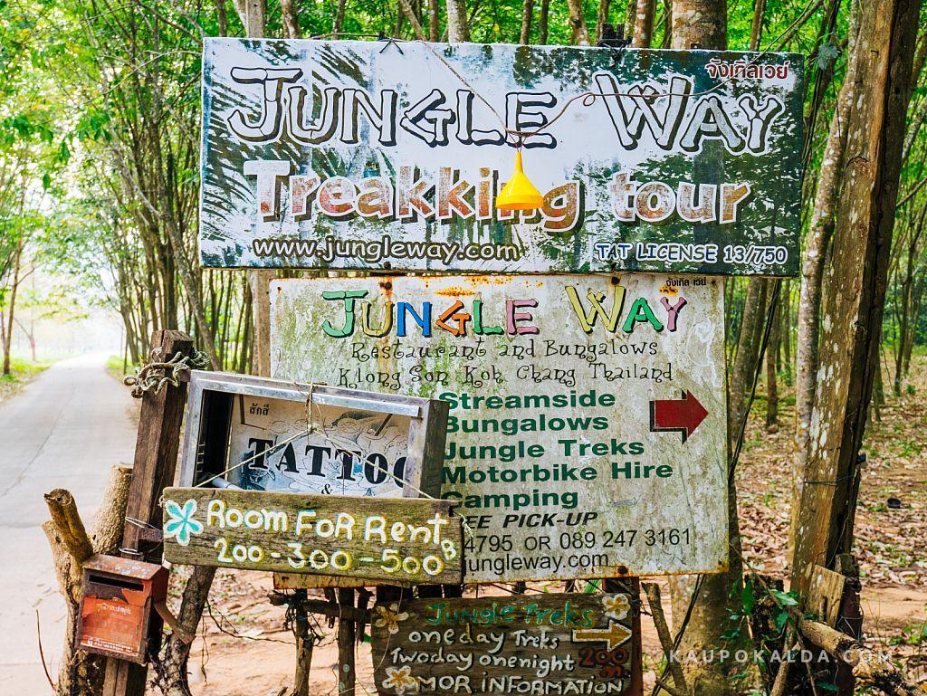 Jungle View Bungalows - sealt keera paremale ja jaluta ca 100m mööda metsateed