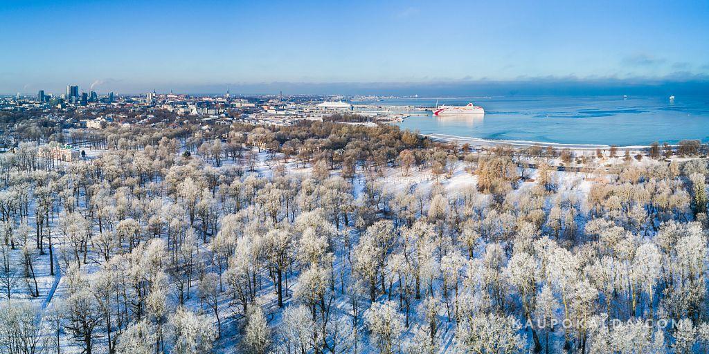 Härmas Tallinn