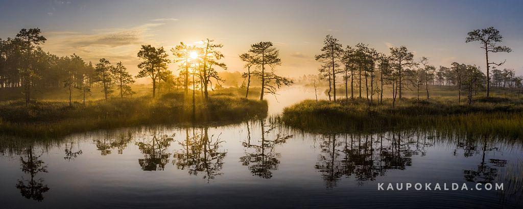 Päikesetõus Kakerdaja rabas